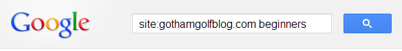 site search in google